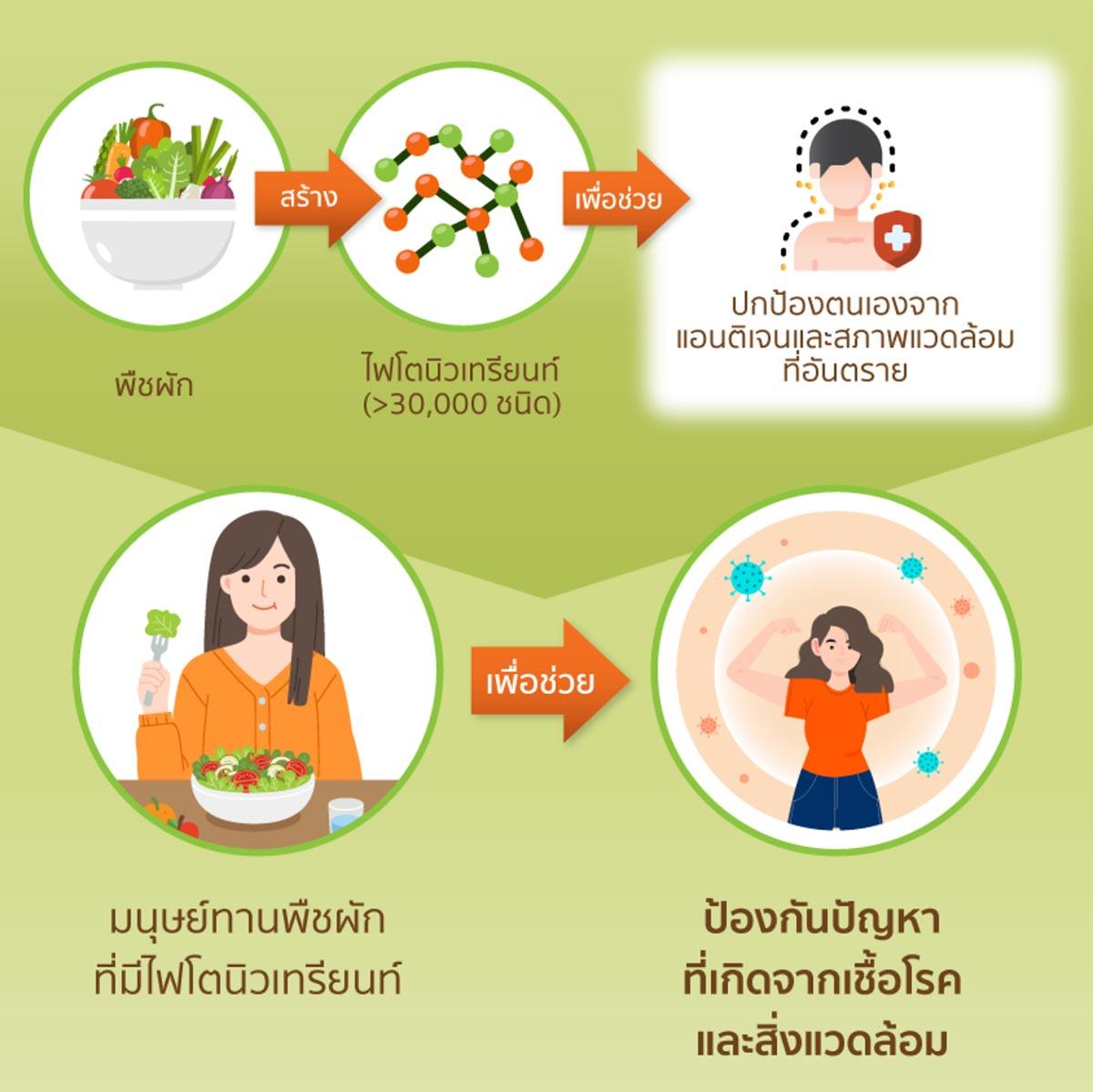 มนุษย์ทานพืชผักที่มีไฟโตนิวเทรียนท์ เพื่อช่วยป้องกันปัญหาที่เกิดจากเชื้อโรคและสิ่งแวดล้อม